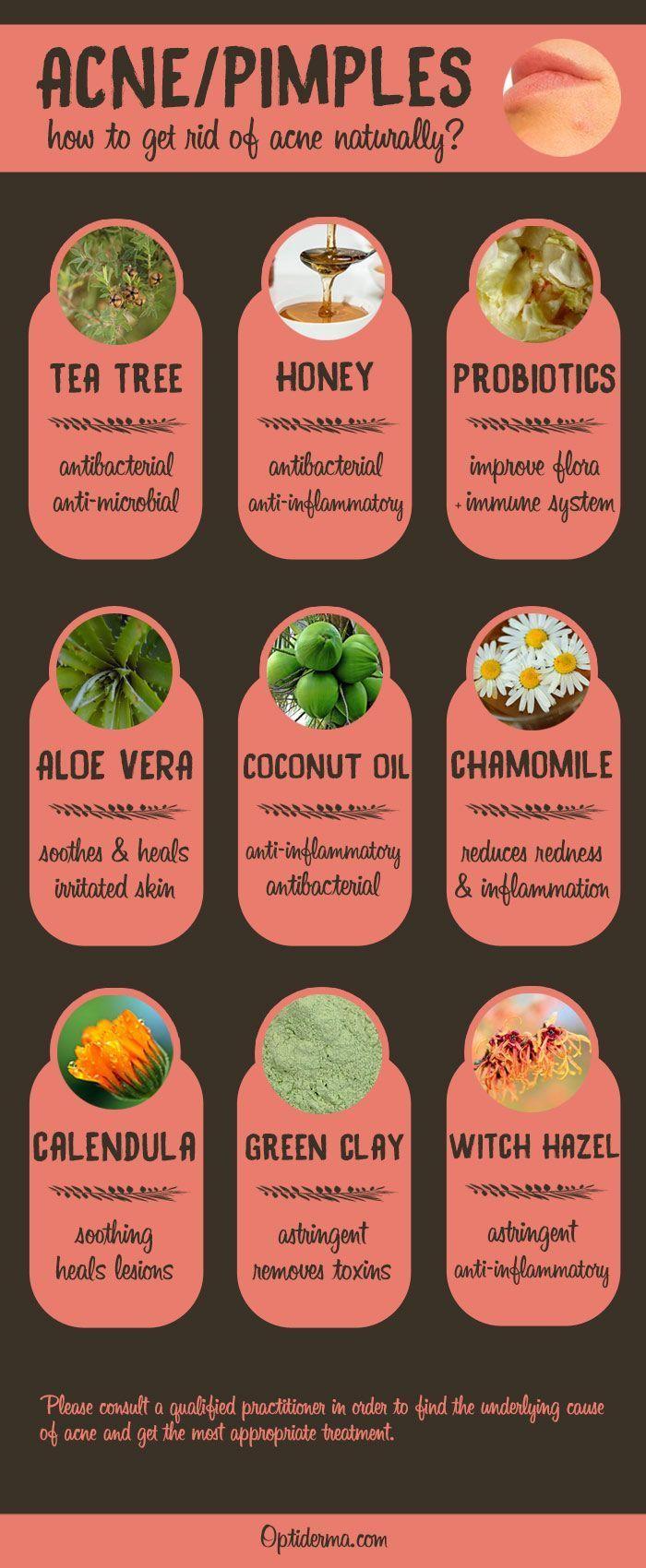 Die besten natürlichen Heilmittel für Akne & Pickel (Infografik). Probieren Sie Teebaum Essenz