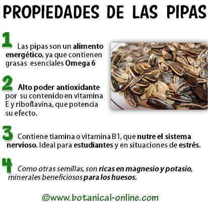 girasol semillas propiedades