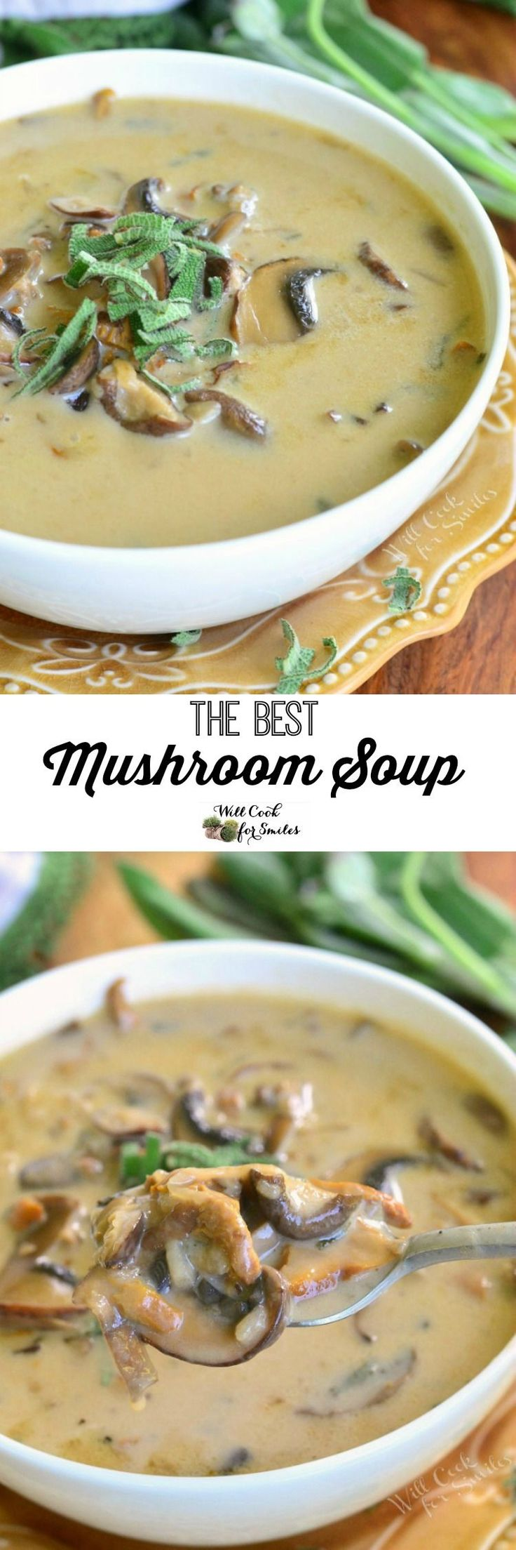 The BEST Mushroom Soup. This creamy soup is made with three types of mushrooms and fresh sage. It's SIMPLE, hearty and guaranteed to please every mushroom lover.: