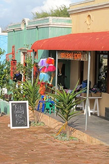 The village of Riebeek Kasteel is tiny       A small town square lined with unique shops and restaurants, so don't forget your shopping basket . . .