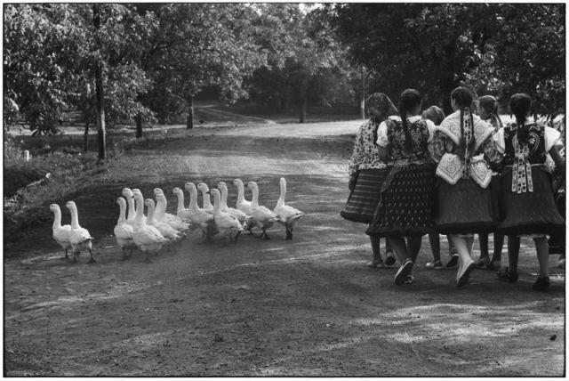 Elliott Erwitt | Hungary | 1964