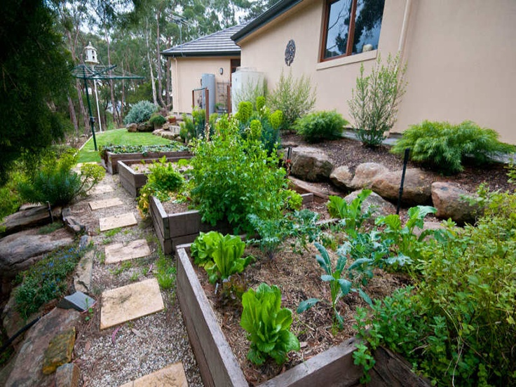 raised planters and path