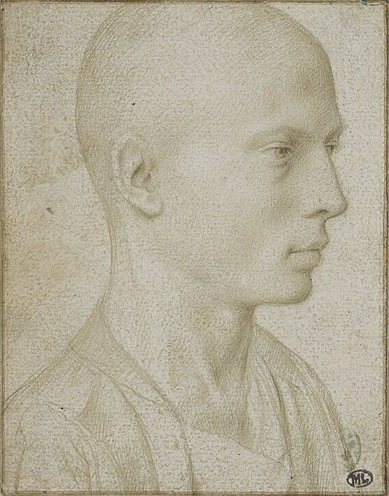 Study of a Bust of Young Boy with Shaved Head  Gerard David