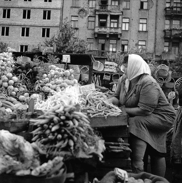 polna 1959