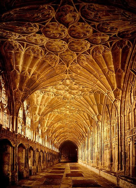 Sunlight, The Cloisters, Gloucester, England.  Photo by CowGummy at Flickr: http://www.flickr.com/photos/cowgummy/3496606855/in/faves-3tuxedocats/#