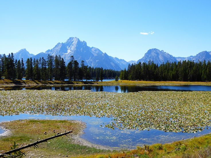 """Swan Lake"" by TravelPod blogger fol-de-re from the entry ""O Come All Ye Faithful"" on Wednesday, September  9, 2015 in Yellowstone National Park, United States"