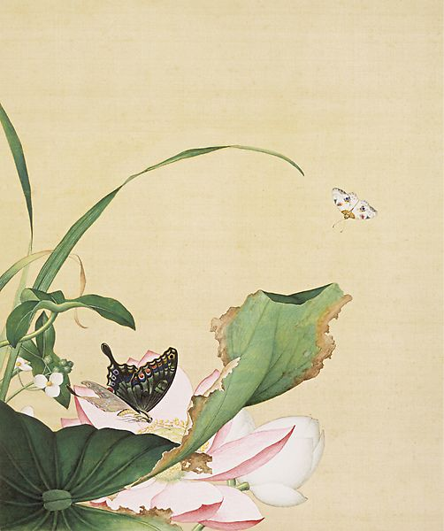 13. Painting of Lotus and Arrowhead Flowers (Screenshot from Secret China) - See more at: http://www.chinagaze.com/2013/11/05/giuseppe-castigliones-chinese-painting-part-3/#sthash.YbM37Ruz.dpuf