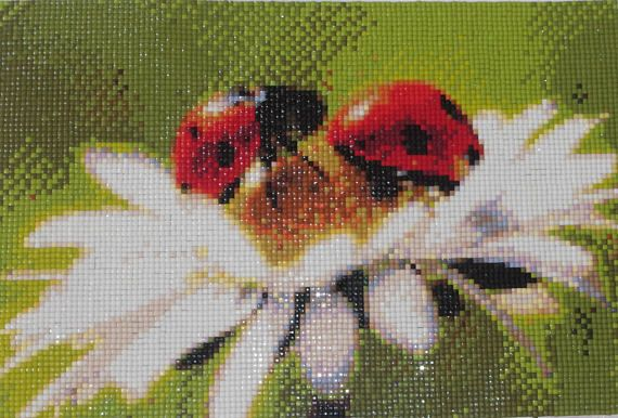 Ladybird and Daisy Diamond Painting Finished Completed Wall Decor Embroidery Cross Stitch Rhinestone Needlework Mosaic
