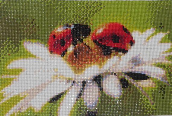 Ladybird and Daisy Diamond Painting Finished Completed Wall Decor Embroidery Cross Stitch Rhinestone Needlework Mosaic
