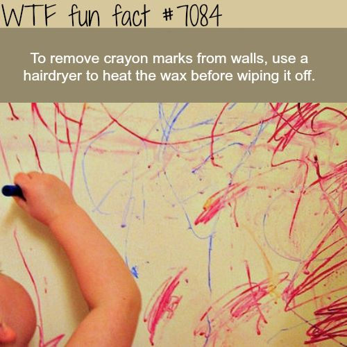 simple way to remove crayons from walls wtf fun facts