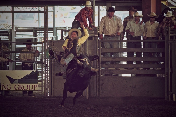 bull riding norco 2012