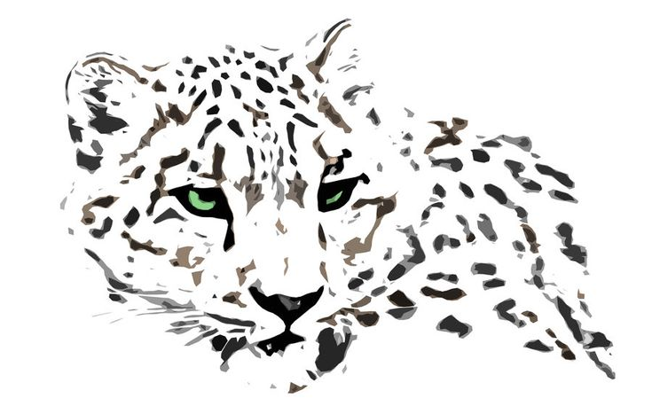 snow leopard by kurka-designs