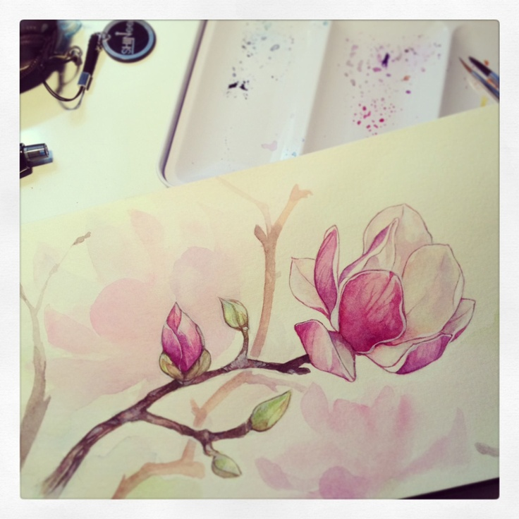 auroreblackcat: Magnolia wip ! I usually paint the background first. But here I wanted a white bg and changed my mind during the process. D:…*I paint my watercolors flowers on a moleskin notebook*