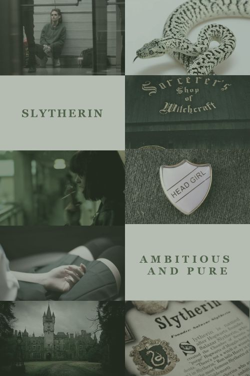 hogwarts houses: 2/4 slytherin