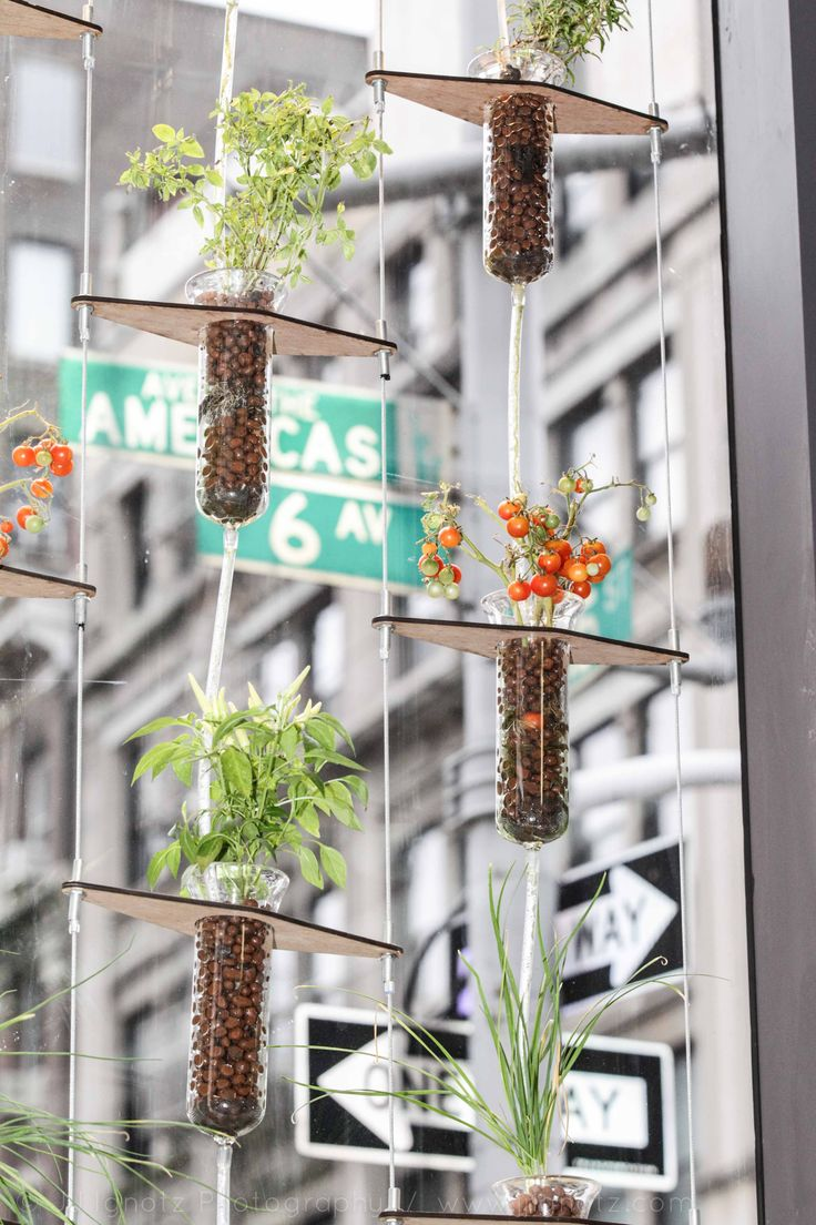 The Bitponics automated hydroponic plant growing system is on display at our #PSFKhome exhibit in NYC.