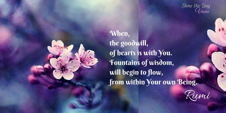 When the goodwill of #Hearts is with YOᘮ, fountains of #wisdom will begin to #flow from within YOᘮર own #Being︵‿‿✨#Rumi #Rumiquote #Love #Light #Vesna