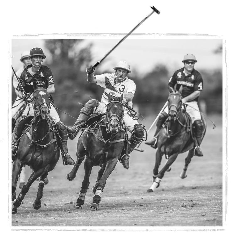 Peroni Barnbougle Polo, Saturday 24th January 2014. Tickets available now.