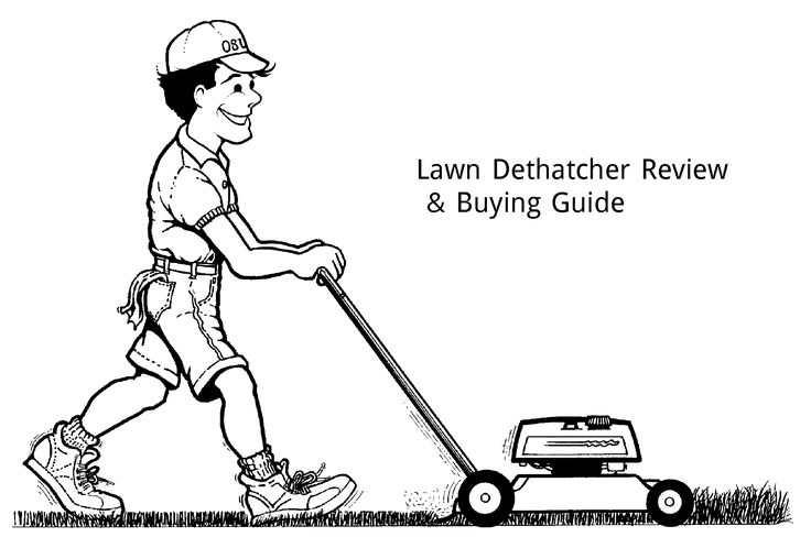 Best Lawn Dethatcher Reviews