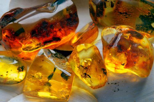 amber stone for sale, amber stone benefits, amber stone meaning, amber stone in hindi, amber stone properties, amber stone healing properties, amber stone healing, amber stone price list, power of amber stone, healing powers of amber stone, honey amber stone meaning, amber stone jewellery,