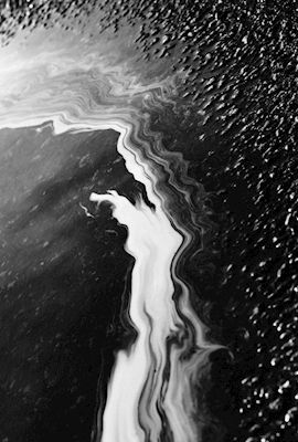 Black and white abstract photograph of pollen in water. Photographer Jens Bäckström, available at printler.com, the marketplace for photo art.