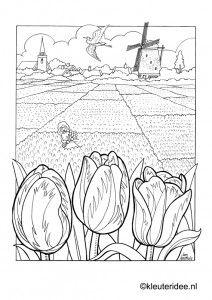 Kleurplaat bollenvelden Nederland, kleuteridee.nl , Dutch spring preschool coloring.