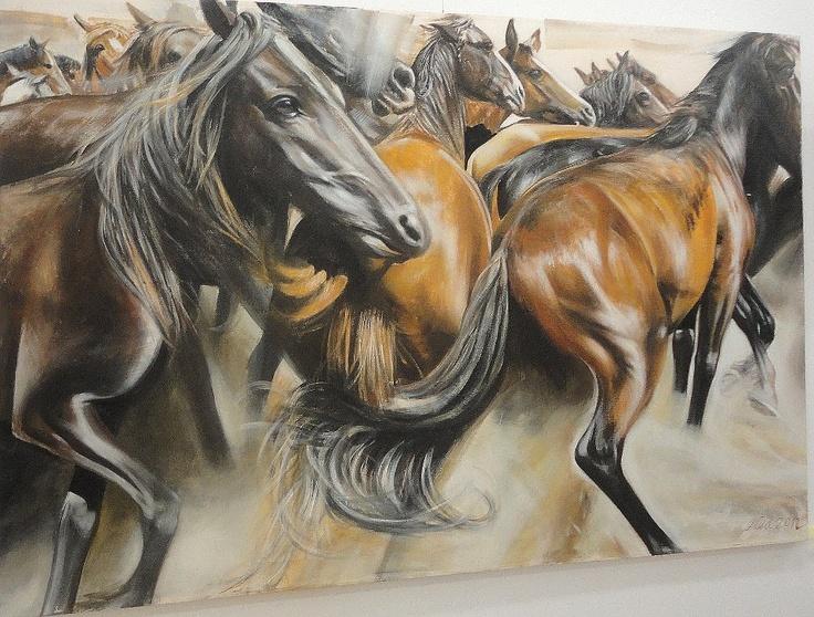 Gheorghe Ilea- horses