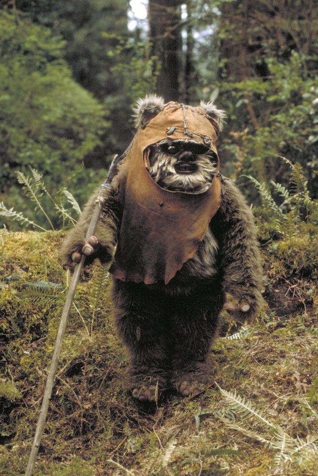Ewok - Stars Wars: Episode VI Return of the Jedi (1983)...this one is my favorite!