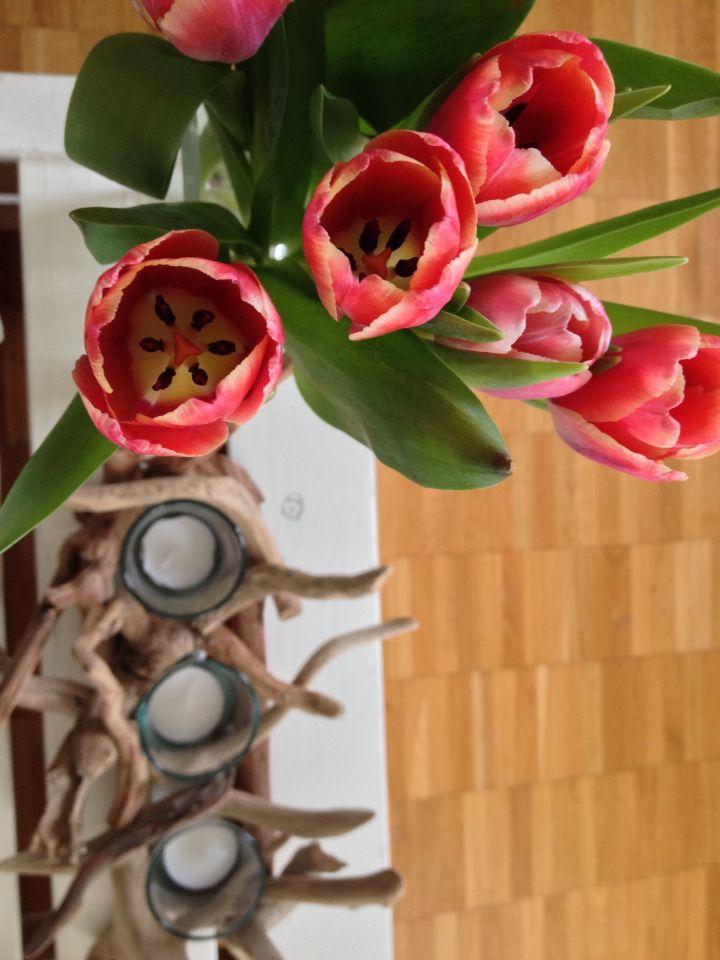 Tulips | Candels | Livingroom