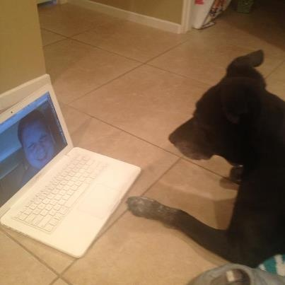 #Skype date with doggy.