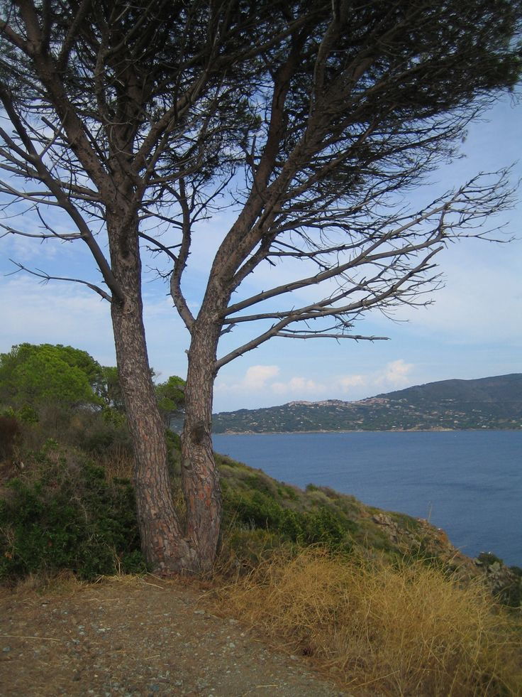 L'isola d'elba Insel elba, Umbrien, Toskana