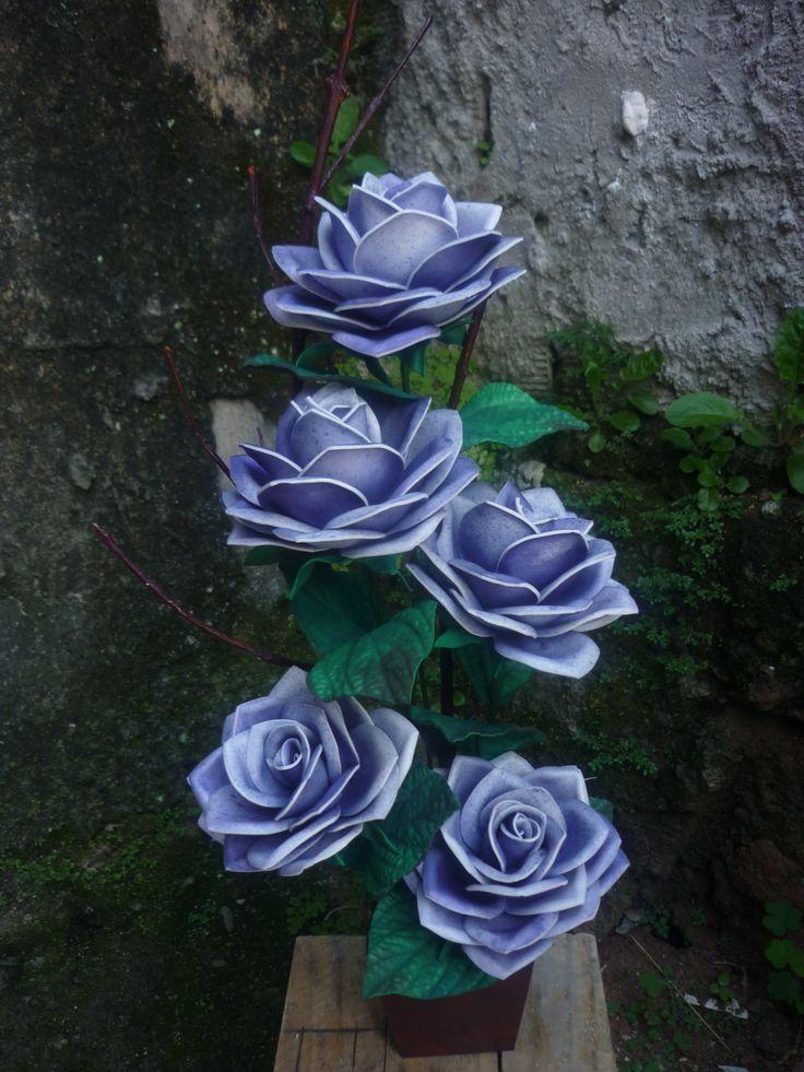 Rosa Mexicanas lílas.