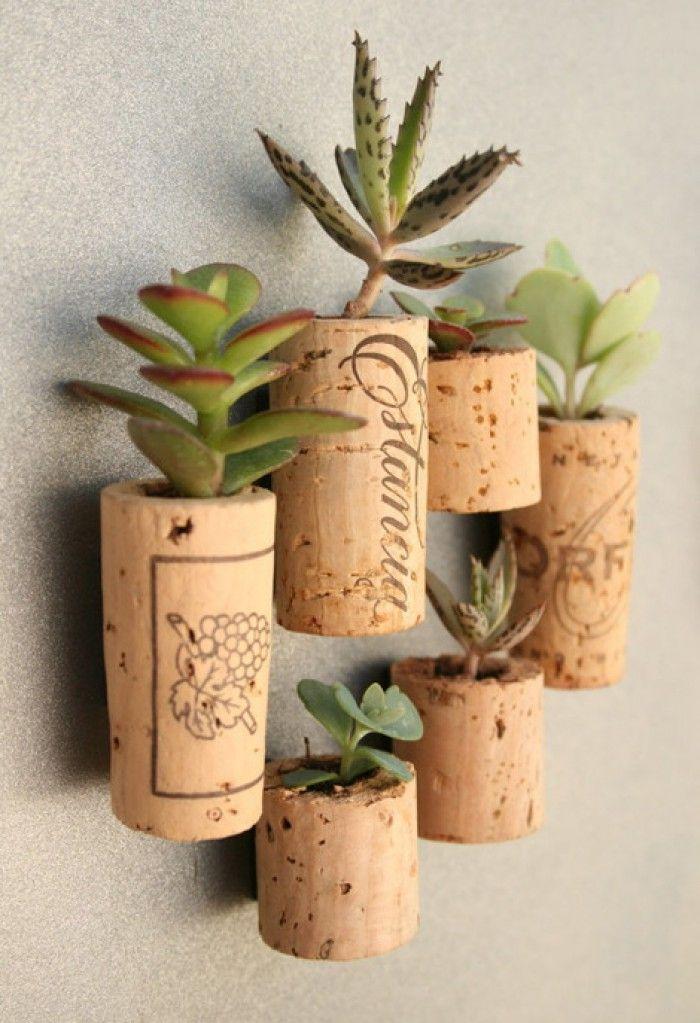Hol een kurk uit en vul de ruimte met wat zand en een vetplantje. Met behulp van magneten kleef je de miniplantjes tegen je koelkast.
