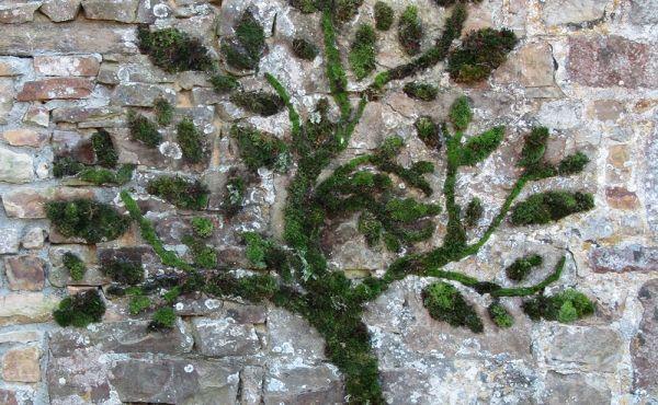 * Mousse graffiti - Arbre Entièrement réalisé en mousse et colle végétales, il est écologique et biodégradable.