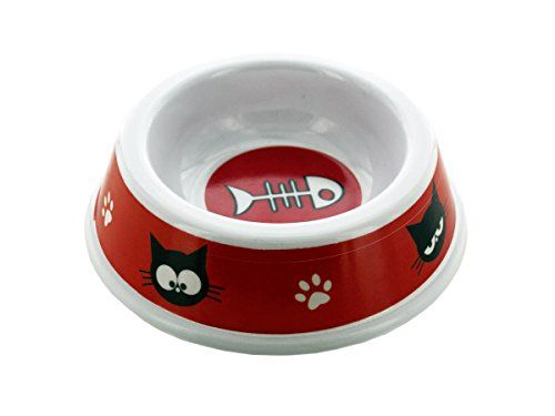 Cartoon Pet Dish  24 Pack >>> Check out the image by visiting the link.