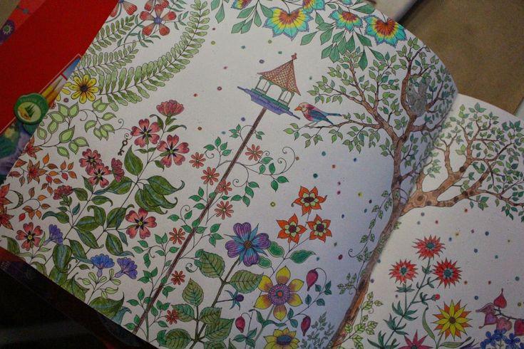 Büyükler için boyama kitapları