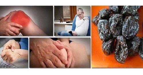 Pruimen om het verlies van botmassa te voorkomen