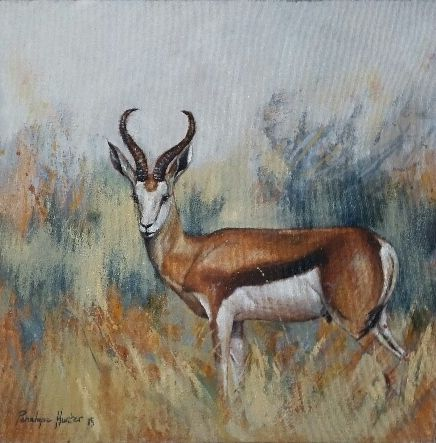 NEW ART ARRIVALS !!! Penelope Hunter 2015 40cm x 40cm springbuck oil on stretched canvas
