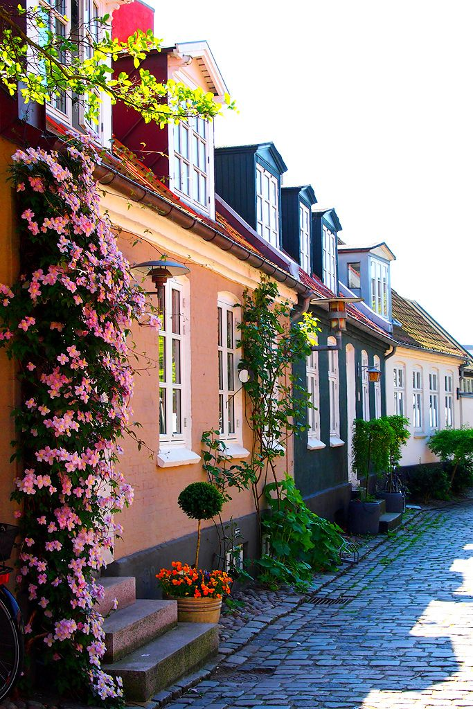 """Møllestien - a steet in Aarhus"" by Ann Hung on Flickr - Mollestien is a true village idyll in the center of Aarhus.  Aarhus is the second largest city in Denmark and the country's main port.  It is located on the east coast of the Jutland peninsula in the geographical centre of Denmark.  Those colorful and characteristic houses are called ""outhouses"" or ""booths"".  Today Mollestien is a picturesque cobbled street and is regarded by many as being the most beautiful street in Aarhus."
