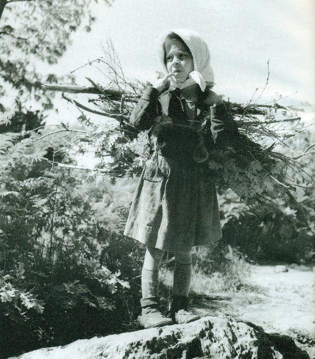 Το πρώτο βάρος.. ονόμασε ο φωτογράφος το δεμάτι με τα ξύλα που σηκώνει στους ώμους του το μικρό κορίτσι 1949 Σκλήθρο Αγιάς φωτ.Τάκης Τλούπας
