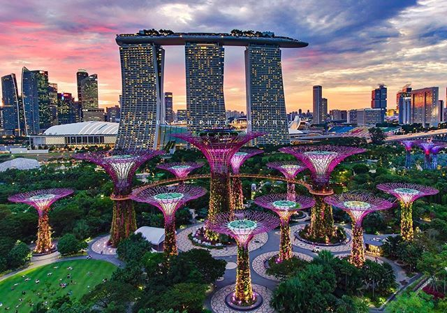 Breathtaking view of the iconic Marina Bay Sands hotel and magical Gardens by the Bay, SingaporeAmazing shot taken by: @leobunggo