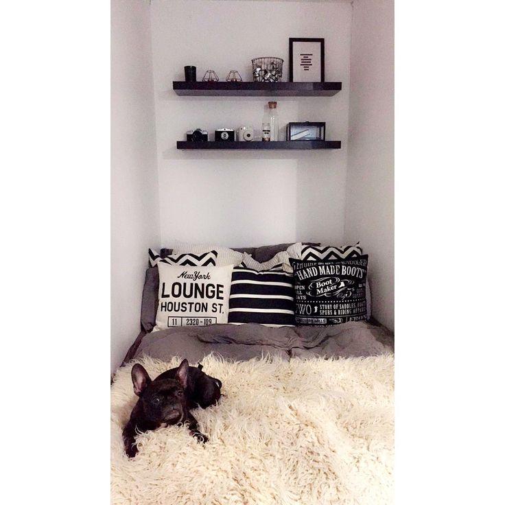 Decoration dog.