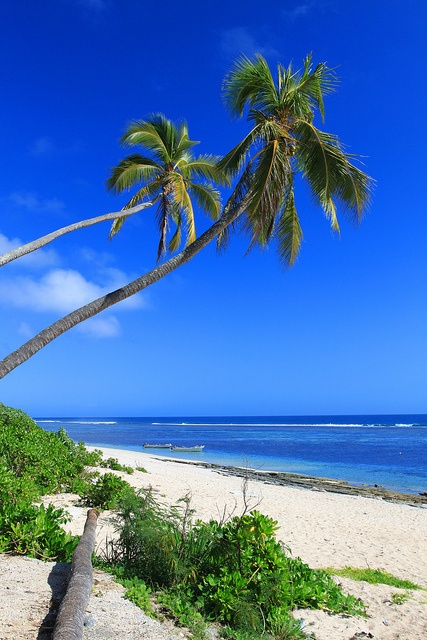 Tonga, Ha'atafu Beach - Tongatapu Island by Adam Pflum Photography, via Flickr