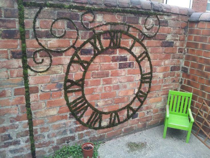 Moss grafitti on my garden wall!