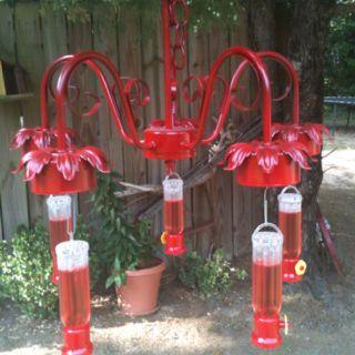 Turn an old chandelier into a hummingbird feeder….