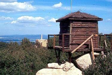 Ruta 1: Tossa de Mar circular Ardenya-Cadiretes