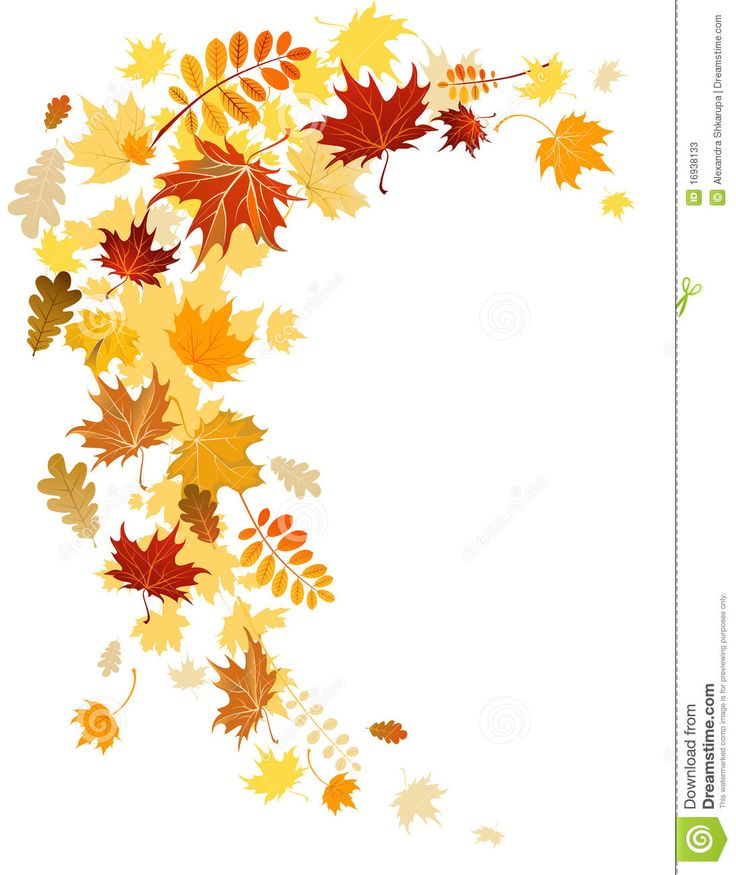 Autumn Leaves  Swirl - Download From Over 55 Million High Quality Stock Photos, Images, Vectors. Sign up for FREE today. Image: 16938133