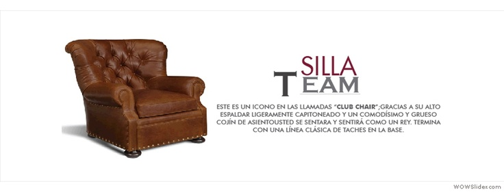Silla Team : http://bonnusa.com/Inicio.html