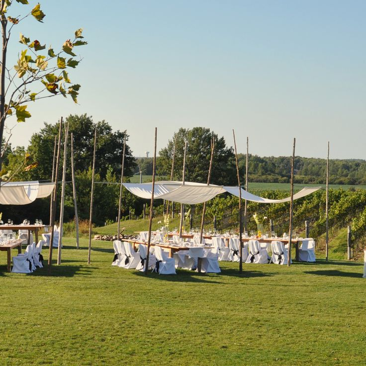Ravine Vineyard Event Facility Niagara On The Lake Winery Outdoor Wedding
