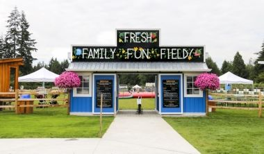 The Fresh Family Fun Field designed for families to play and learn together