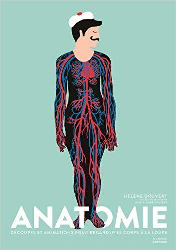 Amazon.fr - Anatomie - Hélène Druvert, Jean-Claude Druvert - Livres